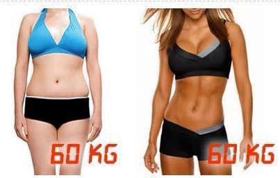 Muskel vs Fett